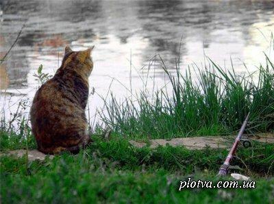 Особенности ловли рыбы в мае
