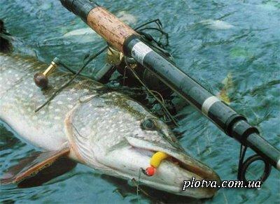 Особенности ловли рыбы в сентябре месяце